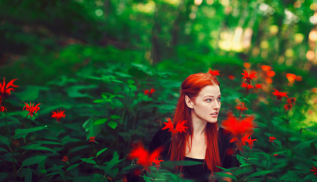 of elfkind - Sarah Ann Loreth